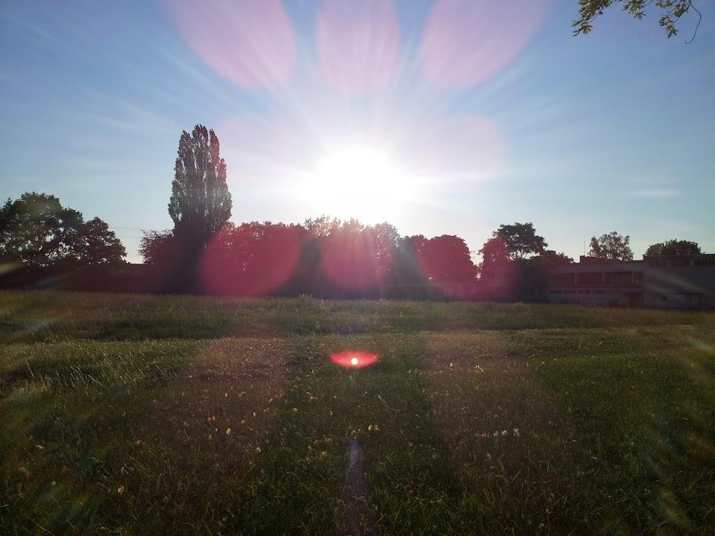 Versteckspiel mit dem Sommer Image