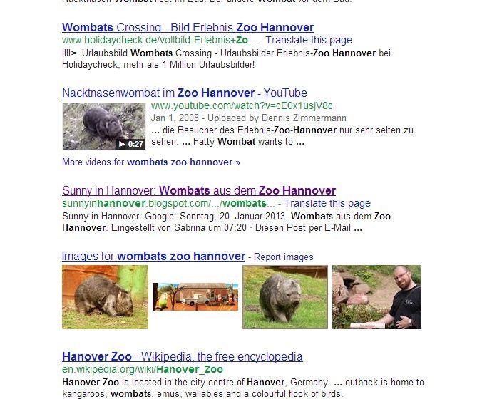 Platz 9 bei Google mit Wombats Image