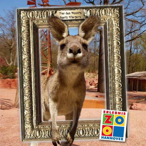 Zwei Monate Zoo Image