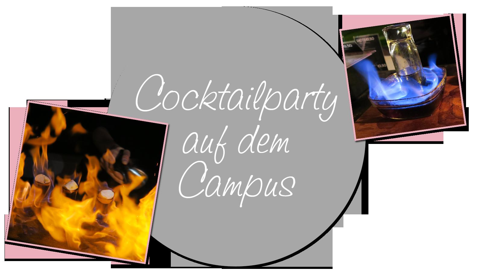 Cocktailparty XL auf dem Campus Image